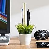 Portamatite Vaso di Fiori con Erba Grass-Vaso porta penna Gadget da scrivania