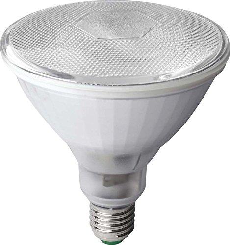 scharnberger + Has. Lampada a risparmio energetico 121X 133mm 44299E27230V 23W PAR38LAMPADA FLUORESCENTE CON ALIMENTATORE INTEGRATO 4034451442993