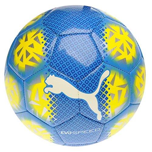palla puma evospeed 1.5