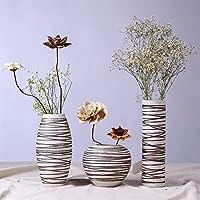 Decorazione di arte Vaso di modo creativo salotto moderno minimalista casa a mano - Vase Trio