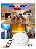 XCSOURCE DC 12V 24V Magic LED WIFI Controller für RGB RGBW RGBWW LED Lichtstreifen IOS oder Android System Smartphone Steuerung LED Ribbon Lampe Musik Modi DIY Modi LD382