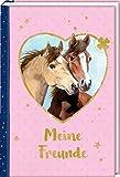Freundebuch – Pferdefreunde – Meine Freunde: Porträt illustriert