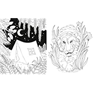 Il-libro-della-giungla-Colouring-book-Con-poster-Con-Poster