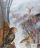 Harry Potter y La Piedra Filosofal (Ilustrado) (42313)