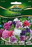 Petunien gefüllte Mischung von Quedlinburger Saatgut