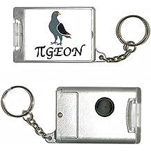Pi Pigeon - Porte-clés de la torche en plastique
