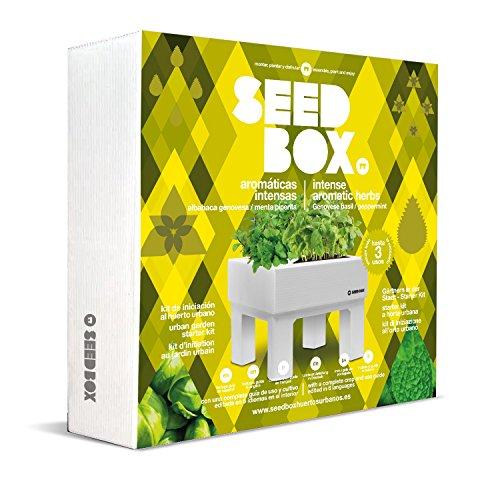 SeedBox SBCOAI - Huerto Urbano albahaca Menta Colección