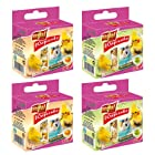 Vitapol Fruit Mix Mineral Block for Birds 35 g (Pack of 4, 2 Orange and 2 Apple)