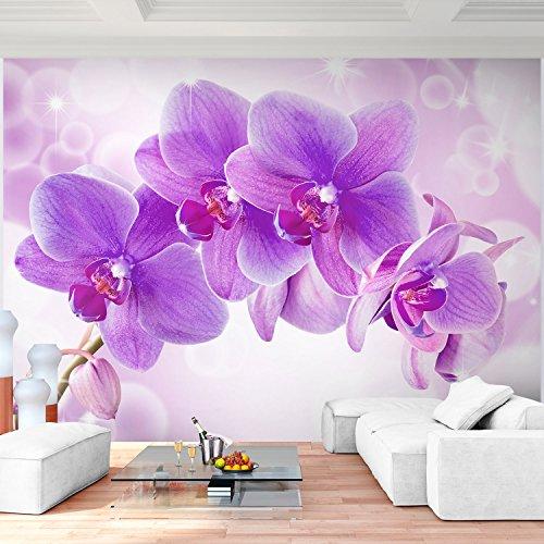 Fototapete Orchidee 308 x 220 cm - Vliestapete - Wandtapete - Vlies Phototapete - Wand - Wandbilder XXL - !!! 100% MADE IN GERMANY !!! Runa Tapete 9012010b