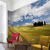 Apalis Vliestapete Zypressen in der Toskana Fototapete Breit | Vlies Tapete Wandtapete Wandbild Foto 3D Fototapete für Schlafzimmer Wohnzimmer Küche | mehrfarbig, 95053