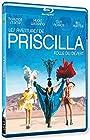 Priscilla, folle du désert [Blu-ray] [Import italien]