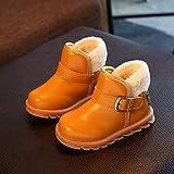Best La venta de Apps de los niños - Zapatos de bebé, SunGren Niña Niño Casuales Zapatillas Review