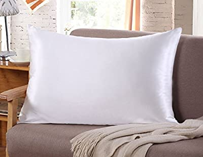 Silk Pillow Case for Hair & Facial Skin to prevent wrinkles Hidden Zipper white 1 Piece by Silk Life