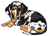 Best Design With Vinyl Decals Friend Items For Girls - Dog Minature Dachshund 5 x 6 Inches Man's Review