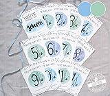 Baby Meilenstein Karten 13 Karten für das erste Jahr in praktischer Tasche Milestone cards Junge Meilensteinkarten erste Monate blau deutsch