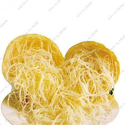 Graines de citrouille rares Cucurbita fil d'or de citrouille non-OGM légumes jardin Bonsai plantes ornementales semences Escalade 10 Pcs / sac 15