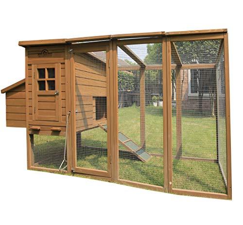 Pets imperial® blenheim pollaio/gabbia con recinto lungo de 8ft / 2.5m e tetto i rete galvanizzata adatto per 4 a 6 uccelli secondo le loro dimensioni
