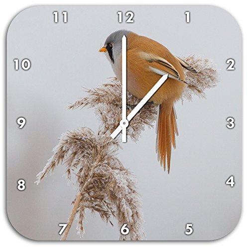 kleiner Vogel auf Weizen im Winter, Wanduhr Quadratisch Durchmesser 48cm mit weißen spitzen Zeigern und Ziffernblatt, Dekoartikel, Designuhr, Aluverbund sehr schön für Wohnzimmer, Kinderzimmer, Arbeitszimmer