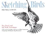 Sketching Birds: Pen, Pencil and Ink Wash Techniques