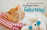 3 Stück kleine Minikarten, Klappkarten mit Kuvert, Karte, Geschenkanhänger, Geburtstagskarte Katze