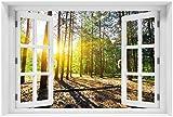 Wallario Poster - Sonnenstrahlen tief hinter dem Wald in