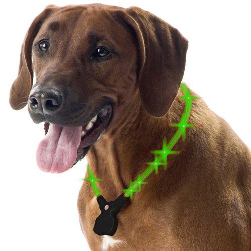 Wolters Hunde Leuchthalsband Nightshift grün 30-40 cm - 5