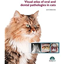 Visual atlas of oral and dental pathologies in cats - Veterinary books - Editorial Servet