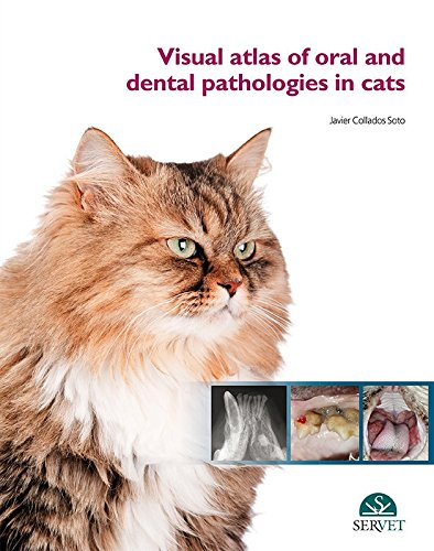 Visual atlas of oral and dental pathologies in cats - Veterinary books - Editorial Servet por Javier Collados Soto