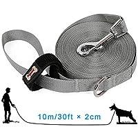 AYADA Laisse pour Chien Dressage 10m - Longue Nylon Dog Training Lead - Professionnel Entrainement Dog Leash - pour Petits à Gros Taille Chien - Gris