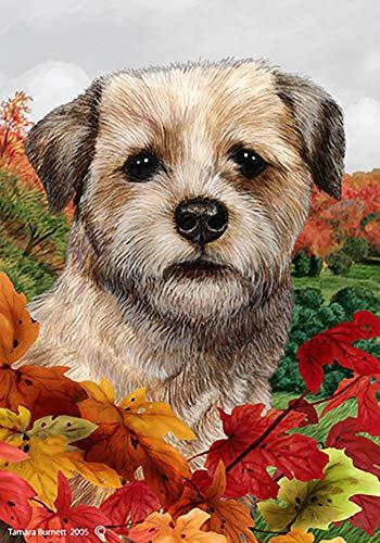 Best of Breed Border Terrier bleu - Tamara Burnett automne feuilles jardin drapeaux