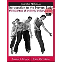 Introduction to the Human Body: Illustrated Notebook: The Essentials of Anatomy and Physiology