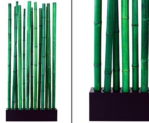 """Bambus Raumteiler \""""Paris3\"""" mit ca. 90x12x205cm, Sockel und 13 Rohre grün 5 bis 6cm - Sichtschutzzaun Sichtschutzzäune Blickschutz aus Bambus Raumabtrennung Paravent"""