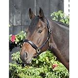 Pfiff 004349-60-KB - Cavezza in pelle per cavalli da tiro colore: Nero