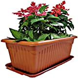 ASFA Deals Plastic Rectangular Planter with Tray Pot Brown Color Pack of 2 (35x18x14cm)