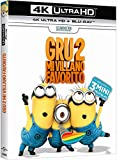 Gru 2: Mi Villano Favorito (4K UHD + BD) [Blu-ray]