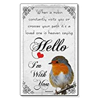 Beenanas Robin Sympathy Loved One In Heaven Small Wallet Card Keepsake