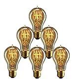 JINYU 6 x Edison Vintage Glühbirne, E27 60W A19 Dekorative Glühlampe, Warmweiß Dimmbar Squirrel Cage Filament Kohlefadenlampe oder Deckenleuchte Ideal für Nostalgie und Retro Beleuchtung