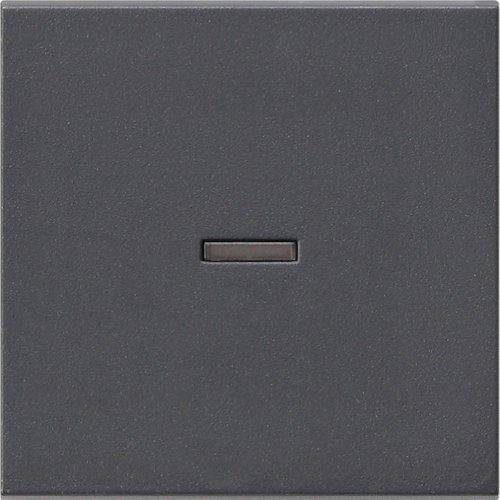 Gira Wippe für Kontrollschalter ST55 anthrazit, 029028 - Weiß Kontrollschalter