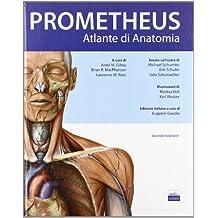 Prometheus. Altante di anatomia