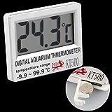 Fische Aquarium Thermometer