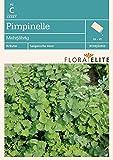 Pimpernelle Mehrjährig von Flora Elite