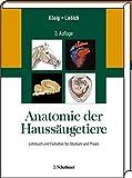 Anatomie der Haussäugetiere: Lehrbuch und Farbatlas für Studium und Praxis Ausgabe in einem Band