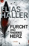 Furcht und finsteres Herz (Ein Erik-Donner-Thriller 5) (German Edition)