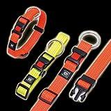 Karlie ASP Day&Night Halsband, Farbe / Halsumfang, Orange / 30 - 45 cm, Halsband reflektierend