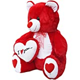 Amardeep and Co Teddy with I Love You Heart, Red (60-cm)