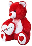 #4: Amardeep And Co Red Teddy With