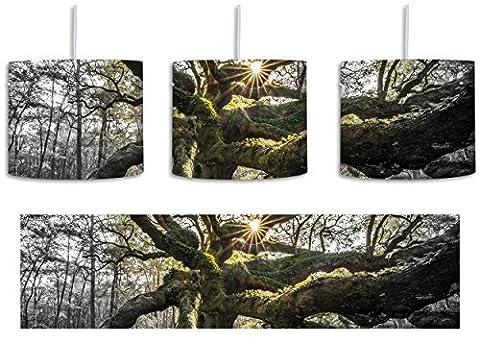 gigantisch verwzeigter Baum B&W Detail inkl. Lampenfassung E27, Lampe mit Motivdruck, tolle Deckenlampe, Hängelampe, Pendelleuchte - Durchmesser 30cm - Dekoration mit Licht ideal für Wohnzimmer, Kinderzimmer, Schlafzimmer