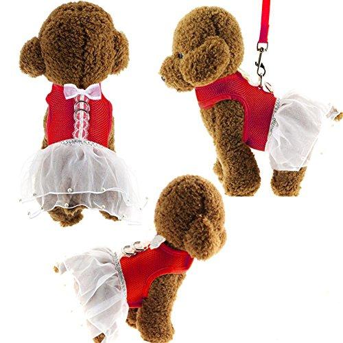 ür Kleine Hunde Sommer Niedlich Prinzessin Haustiere Kleider (M (5.31 x 11.81-12.99 x 16.54-18.5