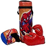 VE Boxing/Punching Bag Set With Boxing Gloves & Head Protector For Kids (Colors & Designs May Vary)