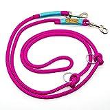 Taumur: zweifach verstellbare Hunde-Tauleine - pink/türkis - Leine für große Hunde aus robustem PPM